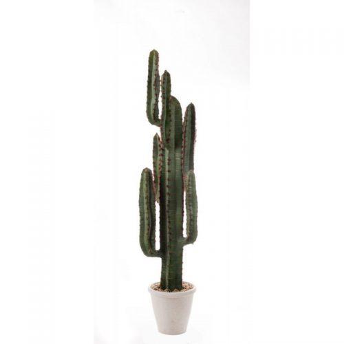 Pianta artificiale cactus per interni L'oca nera