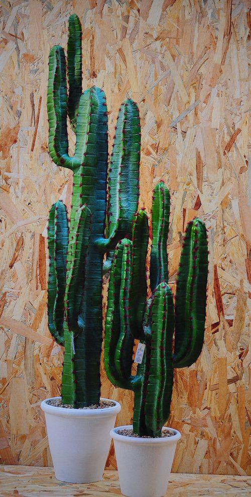 Pianta artificiale cactus per interni L'oca nera effetto vero